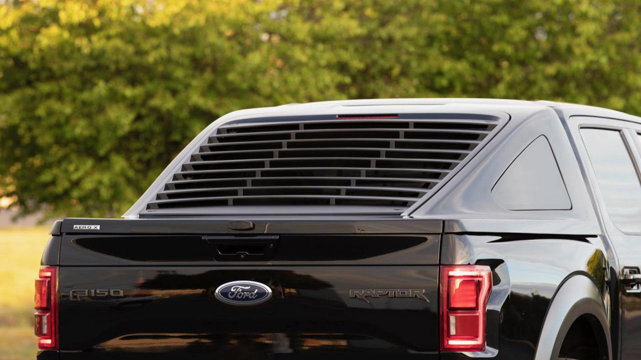 Ford F150 Fastback cap